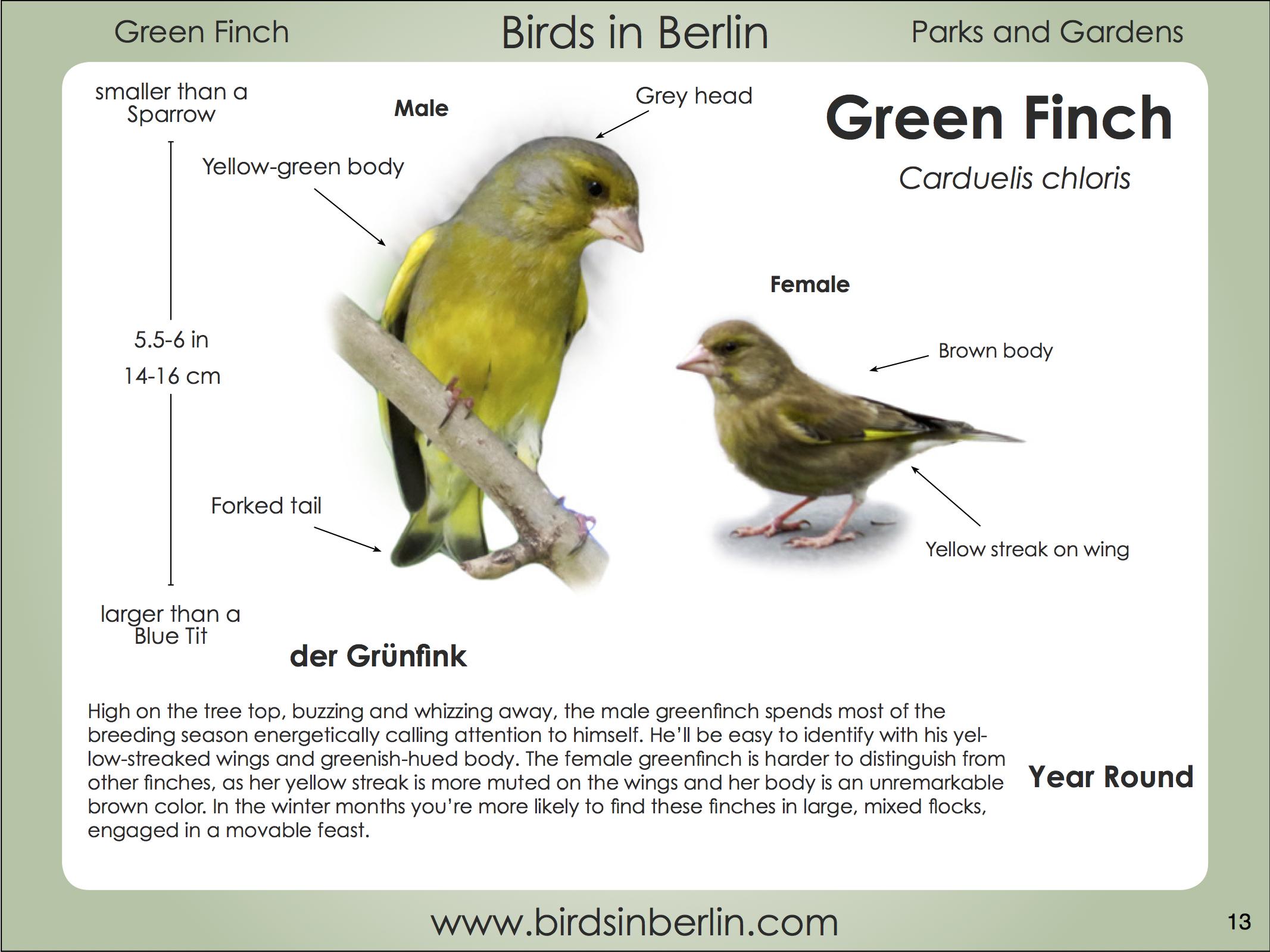 Green Book Berlin